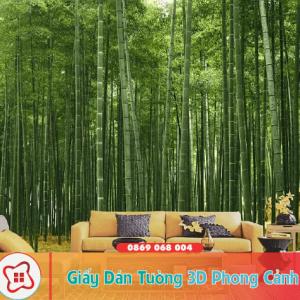 giay-dan-tuong-3d-phong-canh1