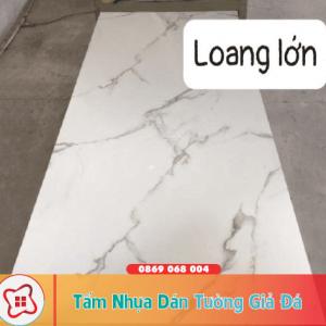 tam-nhua-dan-tuong-gia-da